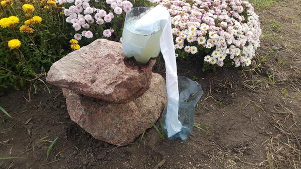 Фильтрация воды подручными средствами post thumbnail